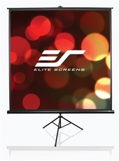 Экран Elite Screens T119NWS1